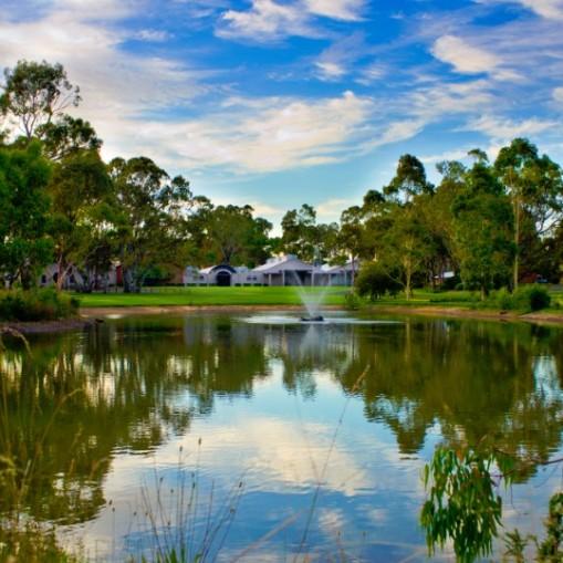 Serafino in serene McLaren Vale overlooking the lake